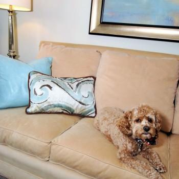 Lake House Living Room Furniture| Marlton NJ | Distinctive Interior Design