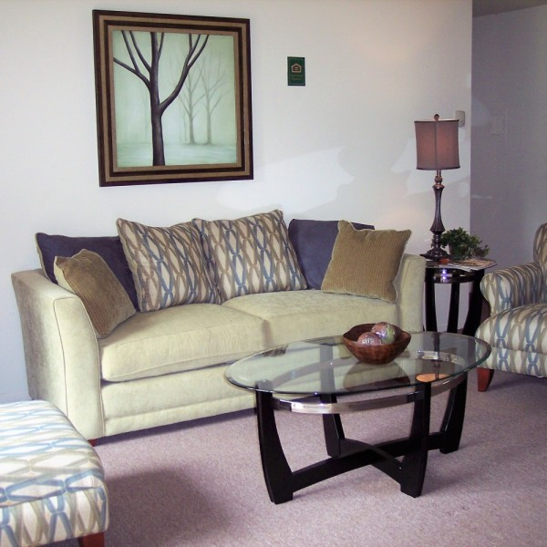 Staging for Apartment Living Room | Delaware Valley | Distinctive Interior Designs