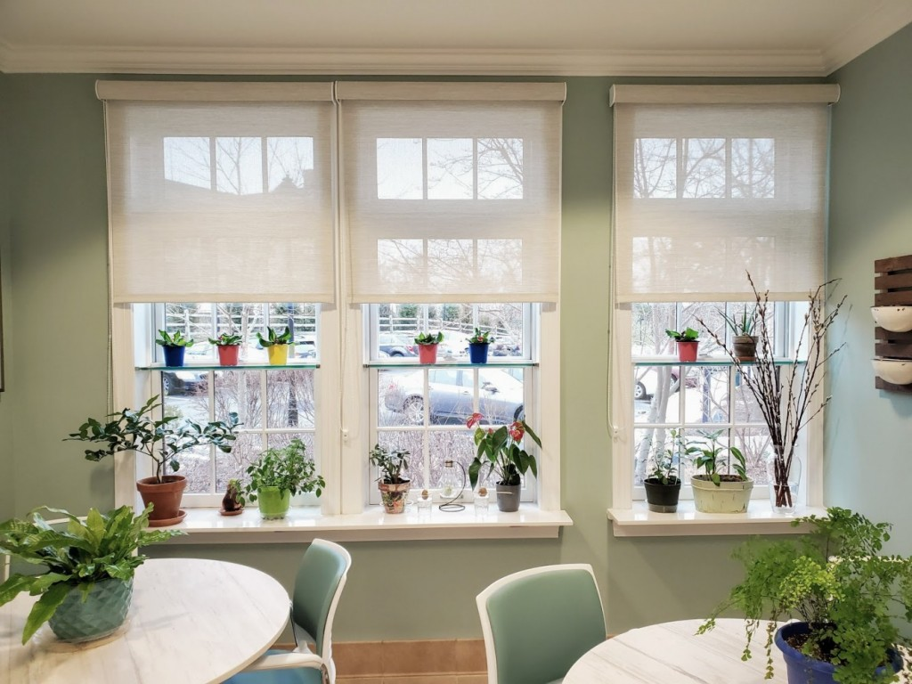 Creating a greenhouse with glass shelves tucked into windows and extended window sills