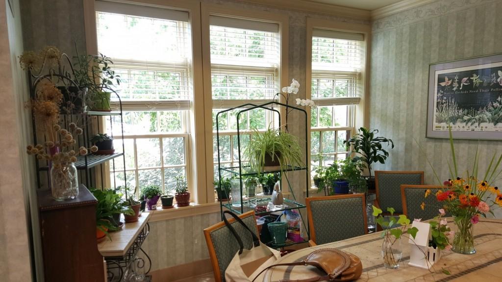 Solarium window area before