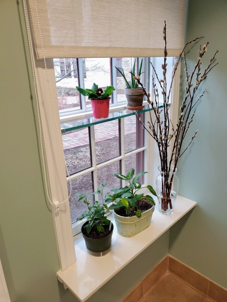 extended quartz sill and glass shelf for plants