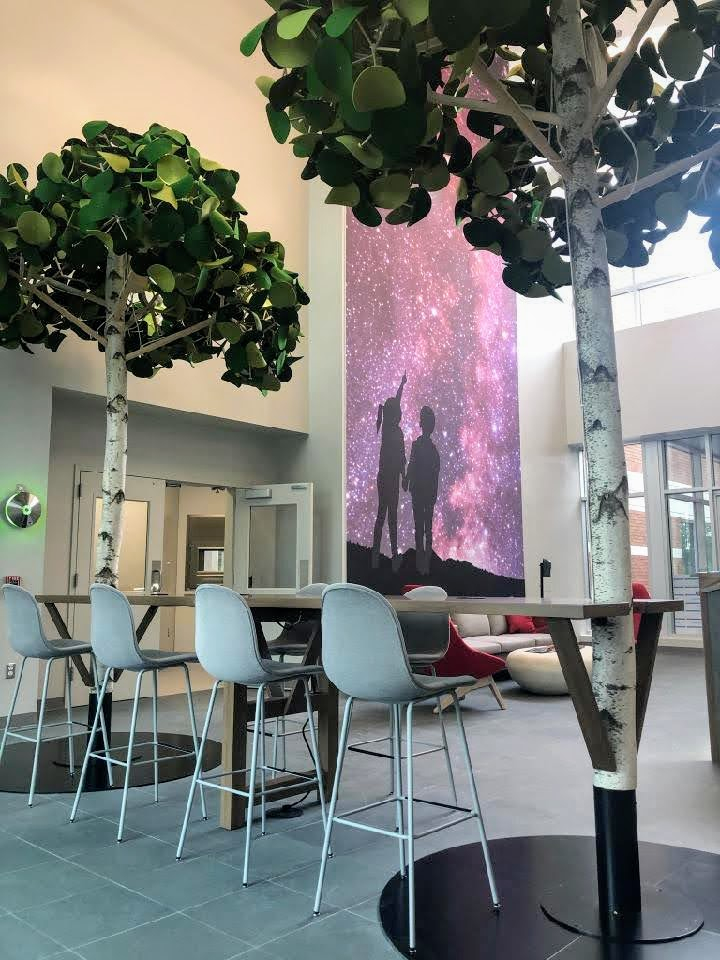 Lobby trees, wave table, acoustic art